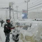 11月初めの大雪。