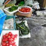 家庭農園パート1