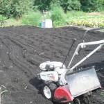 家庭農園パート4